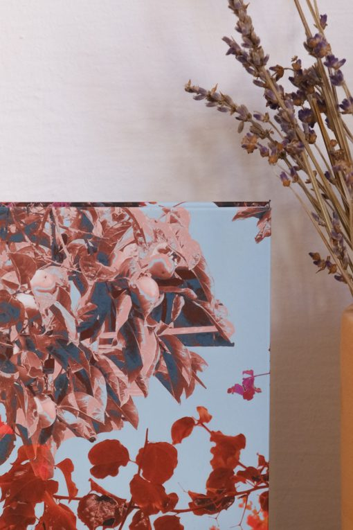 Red & sky blue notebook with flowers